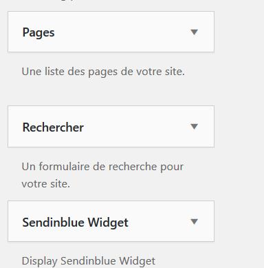 supprimer le widget champ de recherche wordpress