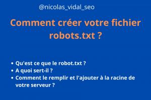 comment créer le fichier robots.txt en 5 minutes